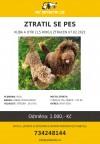 kuba-novy-jicin-2021-02-07-41983-psi-detektiv (1)